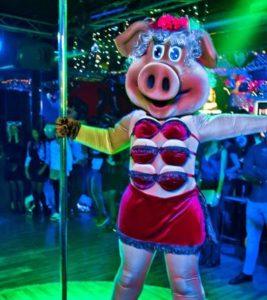 Стриптиз в костюме свинки